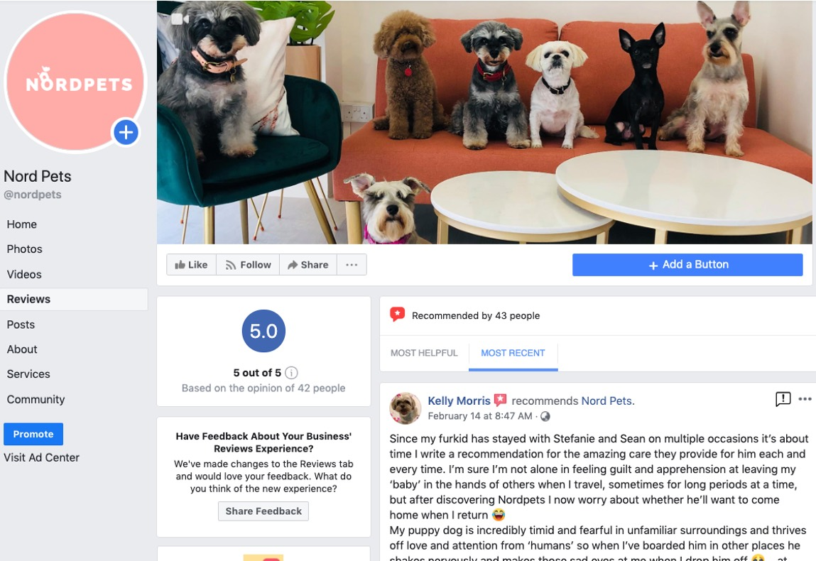 nordpets_review01
